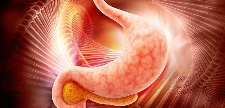 Câncer da vesicular biliar e das vias biliares: causas, sintomas e tratamentos