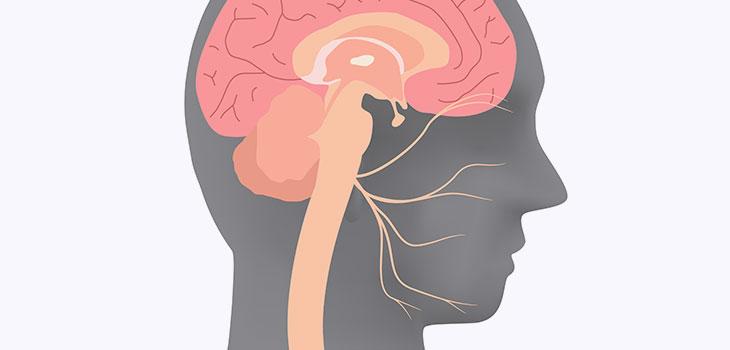 Paralisia Facial (de Bell): causas, sintomas e tratamentos