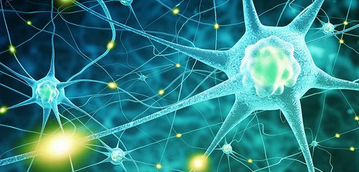 Doença de Huntington: causas, sintomas e tratamentos