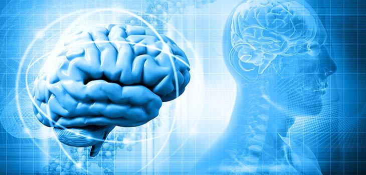 Encefalite: causas, sintomas e tratamentos
