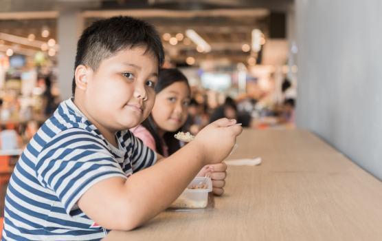 Obesidade infantil: conheça as principais causas e tratamentos